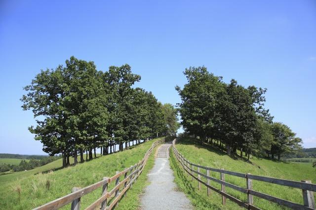 やっぱこれでしょ!北海道観光の前に観ておきたい映画3選