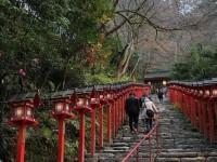 【京都】本当の望みとは何か。貴船神社の「水占い」で考えさせられたこと