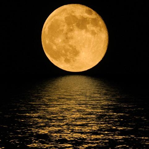 月の満ち欠けから美しくやせる。ムーンダイエットって知っていますか?