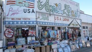 新宿から50分で行けるアメリカ! FUSSA CITY
