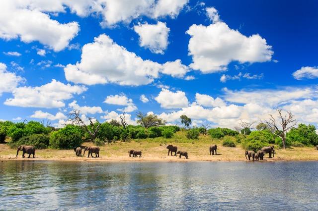 ロンリープラネットの2016年イチオシ旅行先「ボツワナ」ってどんなところ?