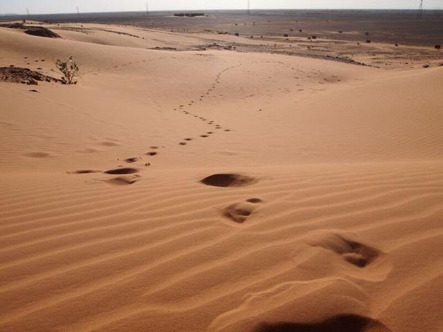 幻想的!スーダンの大量ピラミッド群に行ってみた