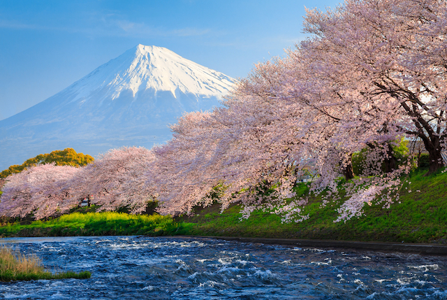ひそかに人気上昇中!外国人観光客が行きたい日本のアノ場所