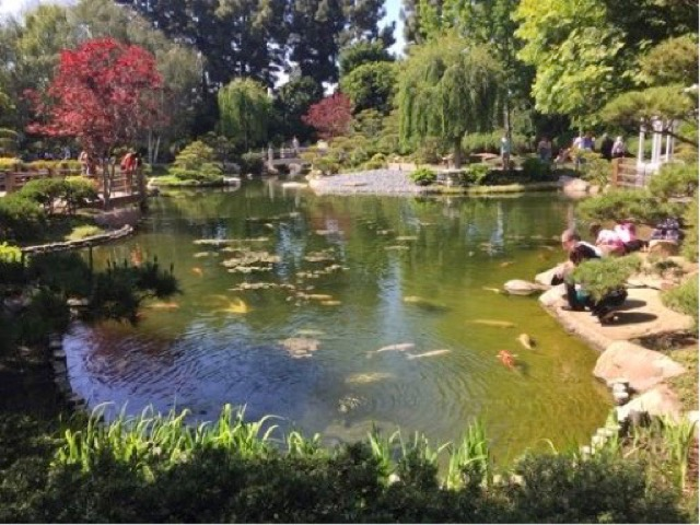 アメリカで日本庭園を楽しむ