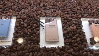 毎日2万個売れる!みんなに愛されるチョコレート屋「バニラビーンズ」