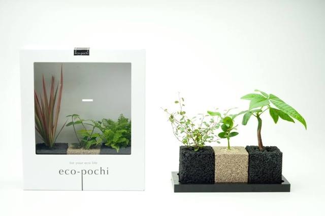 お部屋の消臭をオシャレに。インテリアにも合う「eco-pochi」