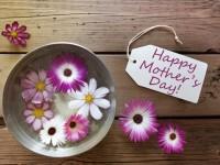 今年の母の日のギフトは何を贈る? 2016年人気ランキングを発表!