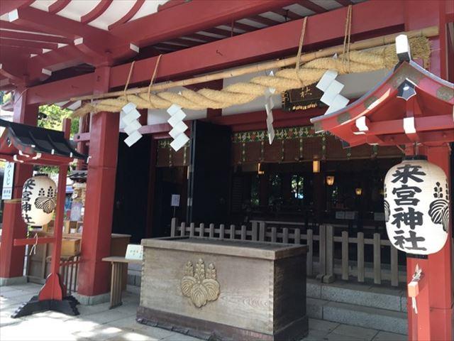 【熱海】パワースポット来宮神社と、国指定天然記念物の大楠