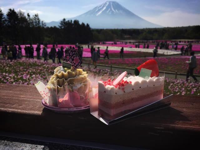 【5/29まで!】初夏のお花見 芝桜と富士吉田グルメのよくばり日帰り旅