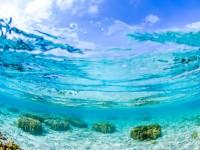 「世界が恋する海」が見たい!今年、座間味島に行くべき5つの理由