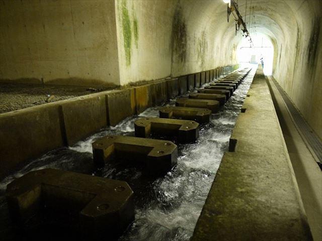 湖にダムに温泉も。東京なのに大自然溢れる奥多摩を楽しむ