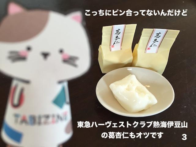 【TABIZINEキャラ名付けキャンペーン】世界を旅する指ネコ誕生!!