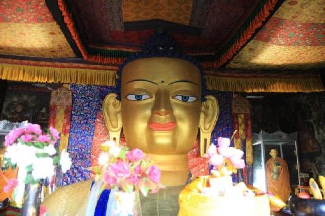 【ラダック】お釈迦様に圧倒される。シェイゴンパと周辺を観光