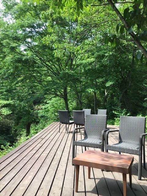 【中伊豆】新緑に囲まれた川沿いで。空間に癒される和カフェ「茶気茶気」