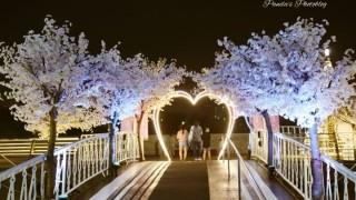 【韓国】観光客にも人気の憩いの場。夜景が素敵な汝矣島公園をお散歩