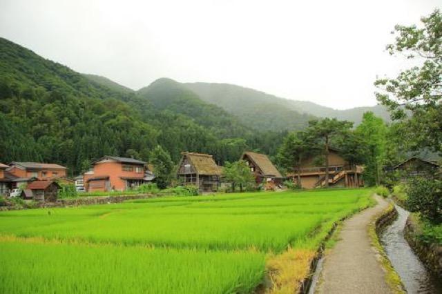 【岐阜】田んぼを眺めながら飲むお酒も楽しい。白川郷立ち飲み処