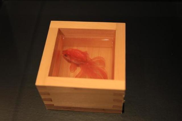 期間限定!横浜スカイビルで美しい金魚が空を舞う作品展開催中