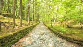 金沢だけじゃなかった!北陸新幹線で行きたい美しい観光地5選