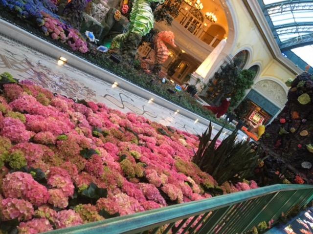 【ラスベガス】水槽と植物が美しい。ベラッジオ植物園を散歩
