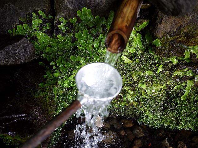 世界遺産白神山地から流れる湧水で。魚介の旨みたっぷりお殿水ラーメン