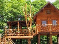 都内から気軽に行ける!遊び心あふれるツリーハウス5選