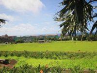 風を感じながら大自然と絶景を満喫。レンタサイクルで巡る青ヶ島&八丈島