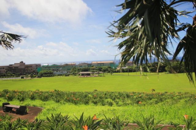 風を感じながら大自然と絶景を満喫。レンタサイクルで巡る青ヶ島と八丈島