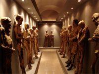 死ぬまでに行きたい!世界の変わった博物館ベスト5