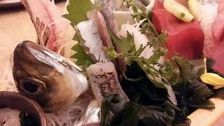 【浦和】活鮑や活アジ姿造り。いけすのある安旨居酒屋「魚盛」