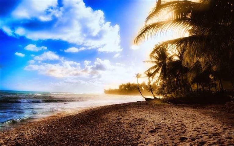 「なにもない」が極上の贅沢!無人島でサバイバル体験