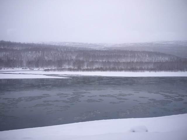 雄大な大自然を体感!一度は乗りたいアラスカ鉄道の旅
