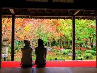 グループ旅行で京都がおトク!3000円以下から泊まれるホテルプラン5選