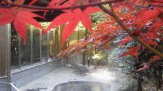 【交通費込みで2000円以内!】都内からすぐに行ける日帰り温泉「国民休暇村奥武蔵