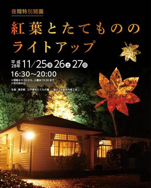 今週どこ行く?東京都内近郊おすすめイベント【11月21日〜11月27日】無料あり