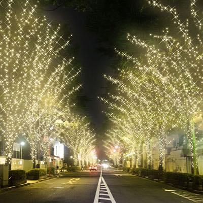 今週どこ行く?東京都内近郊おすすめイベント【12月5日〜12月11日】無料あり