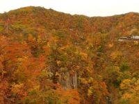 一面の紅葉が素敵。宮城県の紅葉スポット「鳴子峡」を眺める