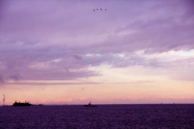 【期間限定】三浦半島を贅沢に。川越シェフプロデュース「LAUMI」とは?