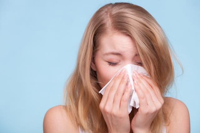 春の花粉から逃げる! 不快な症状の緩和が期待できる避粉地5選