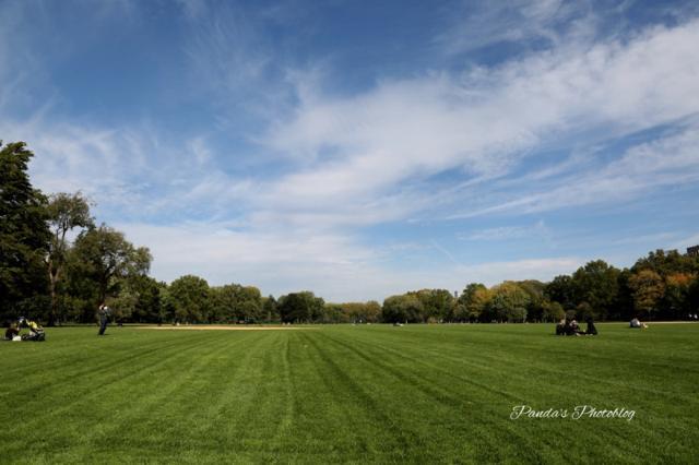 都会と自然の見事な調和。映画の名シーンでも見かけるNYセントラルパーク
