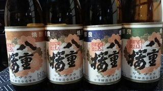 芋焼酎の作り方を学ぶ。「八重桜」を作っている宮崎の古澤醸造で焼酎蔵見学