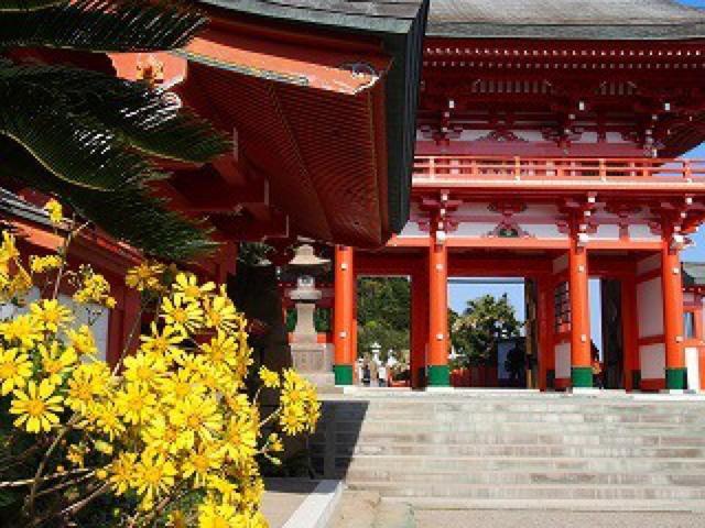 宮崎の絶景を眺めながら兎の絵馬に願掛け。海と洞窟が神秘的な鵜戸神宮