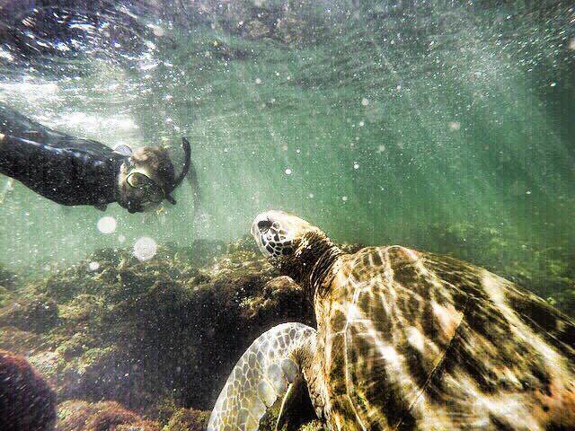 【現地ルポ】ここに行っておけば大丈夫!ガラパゴス諸島のおすすめスポット5選