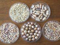 滋賀の伝統ある真珠。100年輝き続ける「びわ湖真珠」の美しさに迫る!