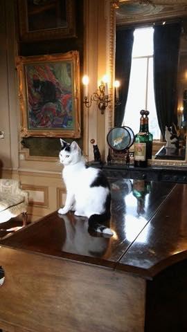ピカソから招き猫まで!世界中の猫アートが集結したアムステルダムの美術館