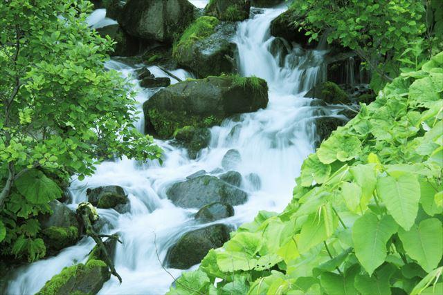 【世界遺産を厳選】疲れた心身のリセットにおすすめ、日本国内の自然遺産3選