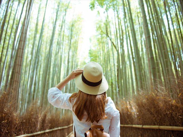毎日が外国旅行気分!?TABIZINE自由研究部【地元の町に外国人観光客を集める方法】その3