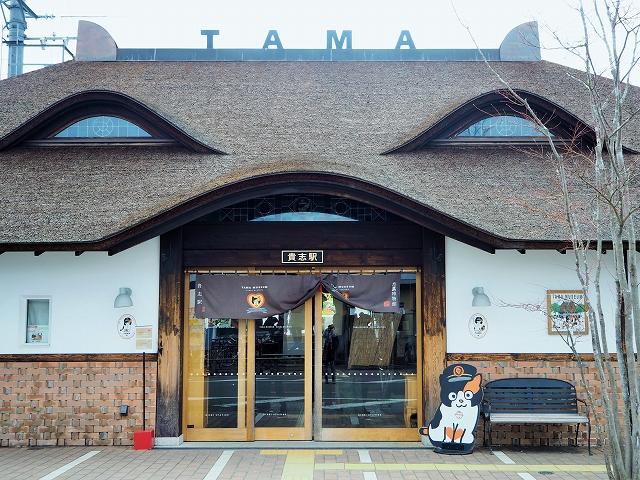 猫のニタマ駅長、見習いのよんたまに会いに!ローカル線・和歌山電鐵貴志川線の旅