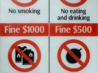 ハトにエサ」も罰金行為! シンガポールで禁止されていること