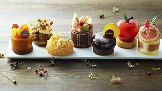 四季の移ろいごとに、新しい。にっぽんの洋菓子HIBIKA「秋の四季菓子」