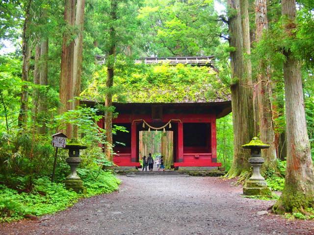 【日帰り一人旅も】行くだけでパワーアップできる、長野・戸隠神社五社めぐり
